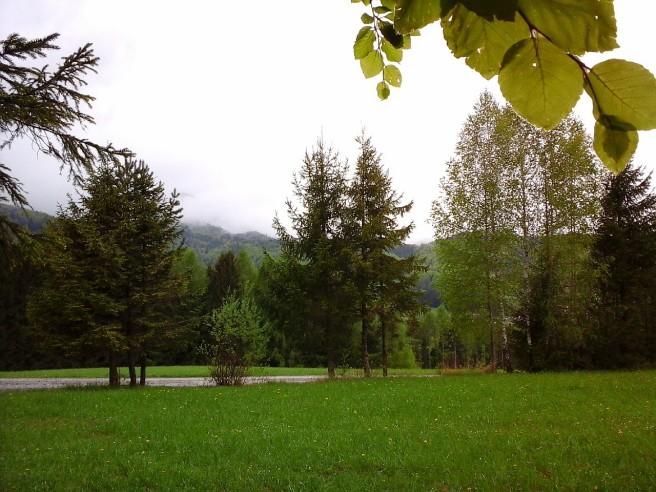 Buchenlaub und Berge